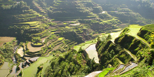 Ifugao Heritage Tours