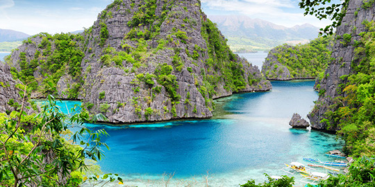 Northern Palawan Wilderness